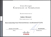 Сертификат Cisco Certified Network Associate